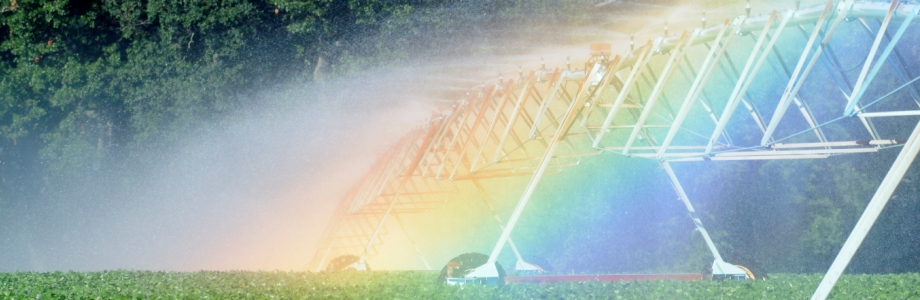 Water Rainbow (Homepage Banner)